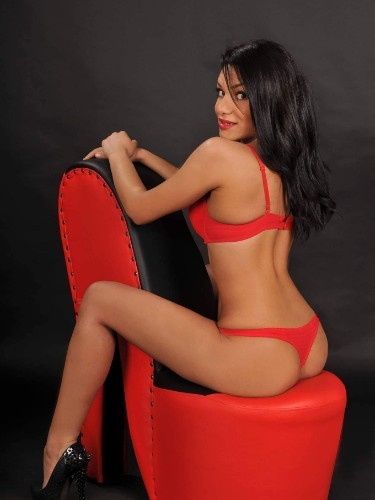 Sex advertentie van escort Sofia (26) in Amsterdam - Foto: 1